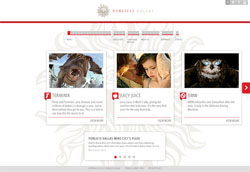 Publicis Dallas screenshot
